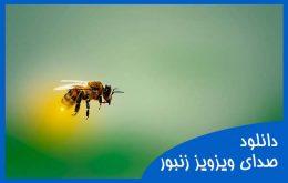 دانلود صدای ویز ویز زنبور