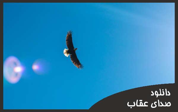 دانلود صدای عقاب