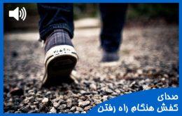 دانلود انواع صدای کفش هنگام راه رفتن