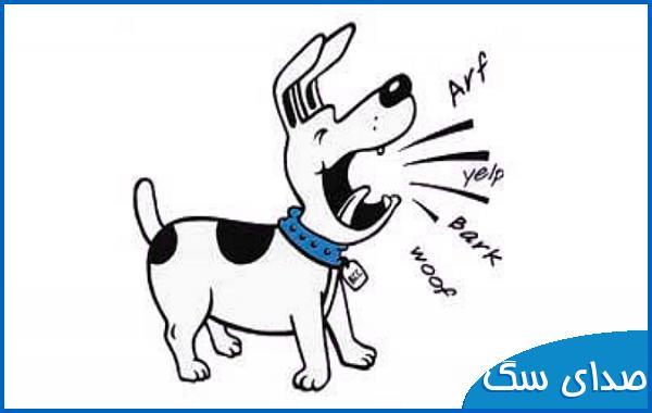 صدای سگ