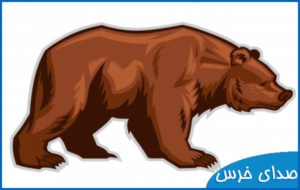 صدای خرس