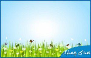 grass wind sound