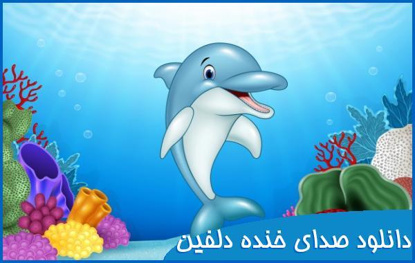 دانلود صدای خنده دلفین