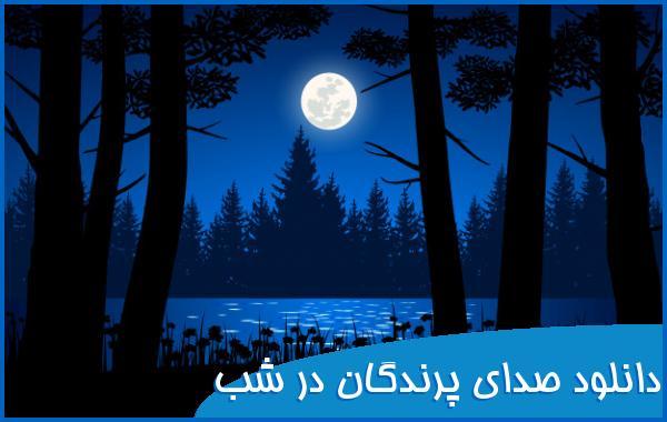 دانلود صدای پرندگان در شب